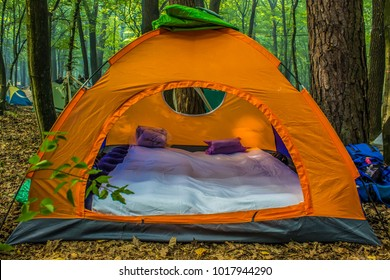 Orange tent in forest with cozy atmosphere inside it with mattresses and pillows