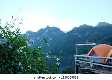 Orange Tents and White flowers are blooming in front of the dark blue mountains, towering Doi Luang, Chiang Dao.