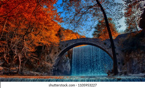 orange trees and a waterfall