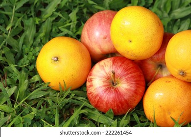 Oranges and apples on green grass background.