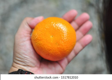 Oranges Citrus fruits for ealthy