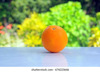 The oranges fruits with nature background