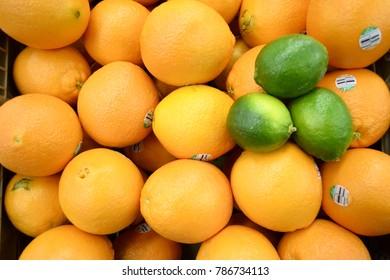 Oranges and lemons in super market of california