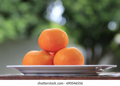 oranges on dish and white bokeh on green background