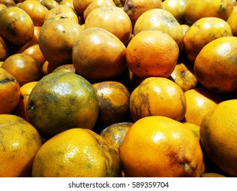Oranges sold in the market