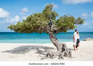 Oranjestad, Aruba - April 10, 2018: A Couple Making Photo in Front of a Divi Divi Tree on Eagle Beach