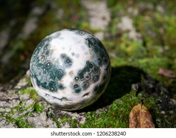 Orbicular ocean jasper sphere with crystallized vugs from Madagascar on moss, bryophyta and bark, rhytidome in forest preserve.