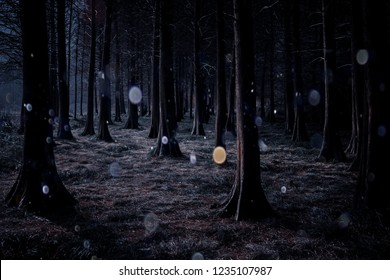 """""""Orbs phenomenon"""" is an optical phenomenon resulting in circular artifacts on an image. Some paranormal investigators think they are ghosts."""