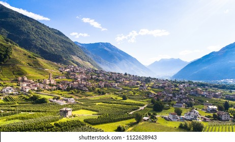 Orchards and vineyards in Valtellina, aerial shot.