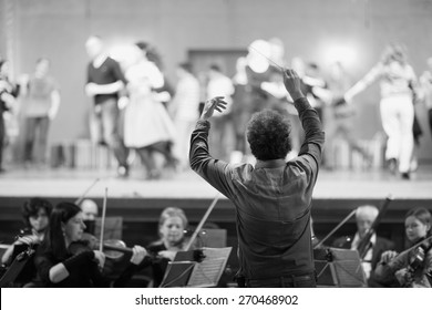 Orchestra conductor leading the musicians in the theater