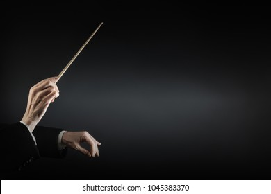 Orchestra conductor music conducting. Hands of conductor with baton. Maestro stick