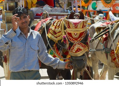 Orchha, India - March 27, 2007:  Unidentified man holds decorated horses during religious procession at the street in Orchha, India.