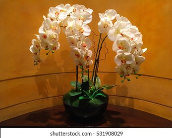 Orchid for decoration: flower vase is on the table