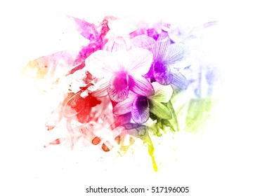 orchid, flower made by color filter, abstract, tinted