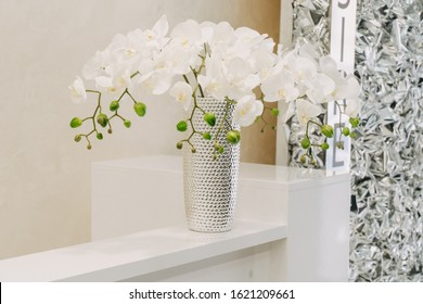 Orchid Flower Phalaenopsis or White Falah on Table. Decorative Botanical Blossoming Plant in Elegant Chrome Vase. Luxury Floral Herb Decoration of Office Room or Beauty Salon Reception