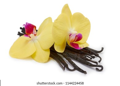 Orchid flowers and vanilla pods