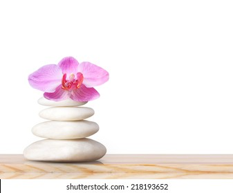 Orchid laying on stones, spa stones and pink orchid