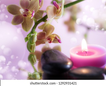 orchid with pink candle