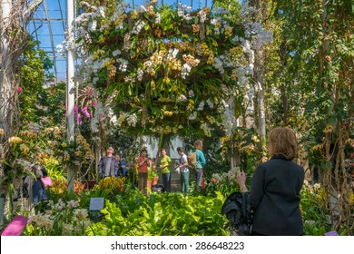 Orchid show in the conservatory at New York Botanical garden, in Bronx, New York. 22 March, 2015