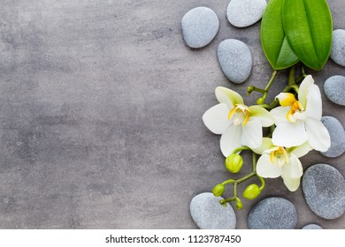 Orchid and spa stones on a stone background. Spa and wellness scene.