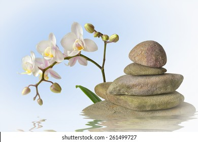 Orchid with stone pyramid