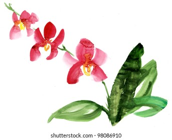 how to draw a realistic orchid