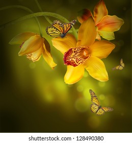5e1ec3f6c Butterfly-orchid Images, Stock Photos & Vectors | Shutterstock