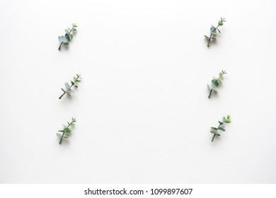 Oregano branches on white marble. Top view.