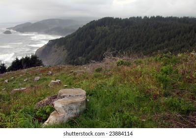 Oregon Coast Oregon, USA