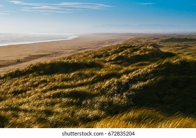 Oreti Beach Dunes, near Invercargill, New Zealand