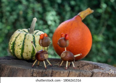 Organic animals made from brown acorns, marrons, magnolia soulangeana seeds and safety matches, funny craft diy, pumpkins on background