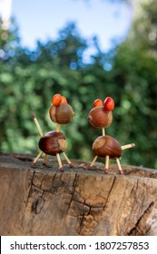 Organic animals made from brown acorns, marrons, magnolia soulangeana seeds and safety matches, funny craft diy