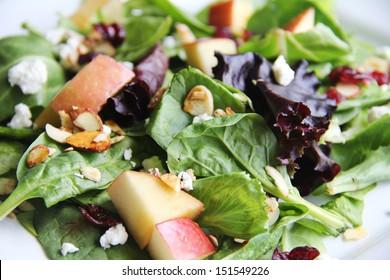 organic baby spring mix salad upclose