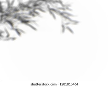 Organic drop shadow on a wall, overlay effect for photo, mock-ups, posters, stationary, wall art, design presentation