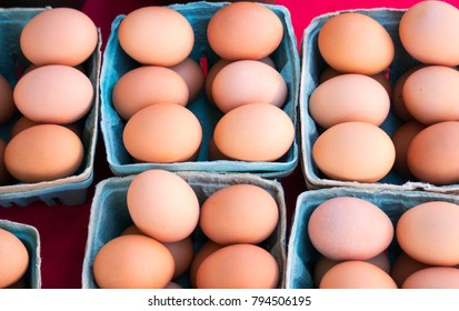 Organic eggs for sale at a local farmers market in St. Pete Beach, Florida