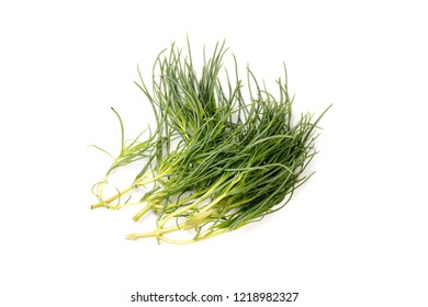 Organic Fennel Herb, Foeniculum Vulgare, isolated on white background