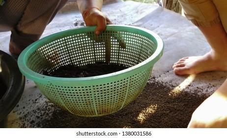 Organic fertilizer in thailand.