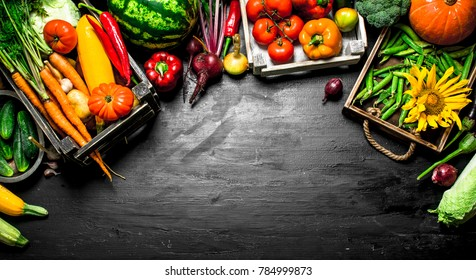Organic food. Fresh vegetables and fruits in old boxes. On the black chalkboard.