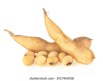 Organic food - Soybean seeds and pods isolated on a white background. Healthy food. Yellow dry soybean seed.