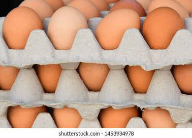 Organic Free-Range Brown Eggs at the Farmer's Market
