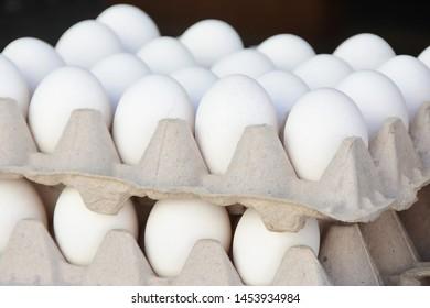 Organic Free-Range White Eggs at the Farmer's Market