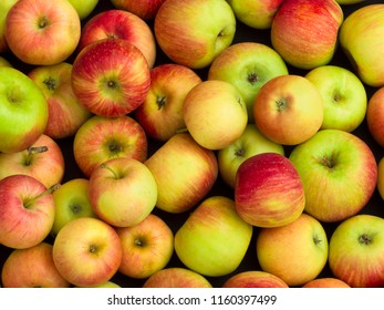 organic and fresh apples