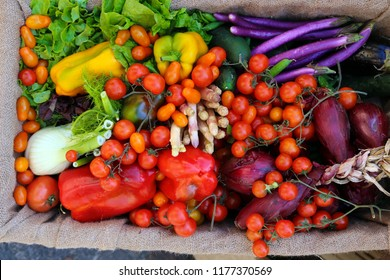 organic fresh fruits and vegetables just harversted for sale at local market