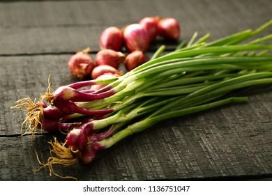 Organic fresh spring onions.vegan food concept.