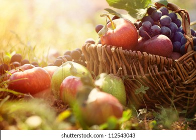 Organic Fruit In Basket Summer Grass Fresh Grapes Pears And Apples Nature