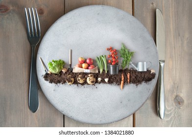 Organic fruits and vegetables growing in earth on a kitchen plate