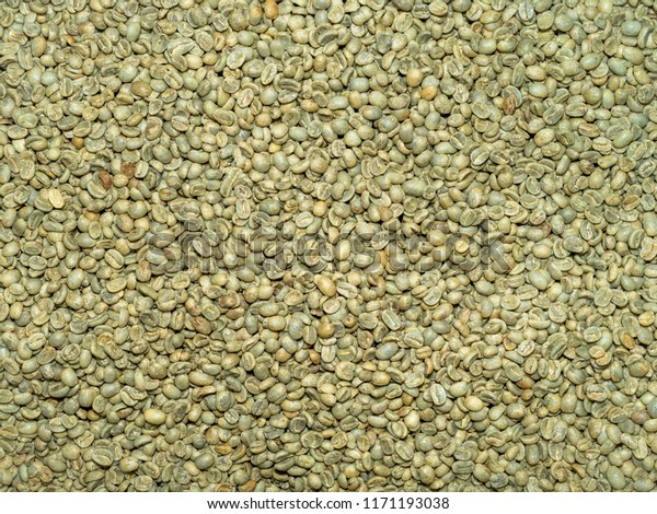 Organic Green Coffee Beans Storage Closeup Stock Photo Edit Now