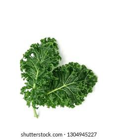 organic green kale leaf vegetable closeup on white background