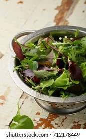 Organic green leaves for salad, food closeup