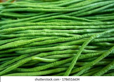 Organic green Yardlong beans in close-up shot.